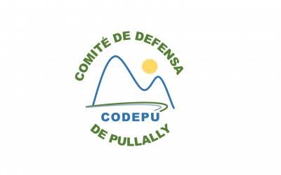 Primera reunión con el Comité de Defensa de Pullally